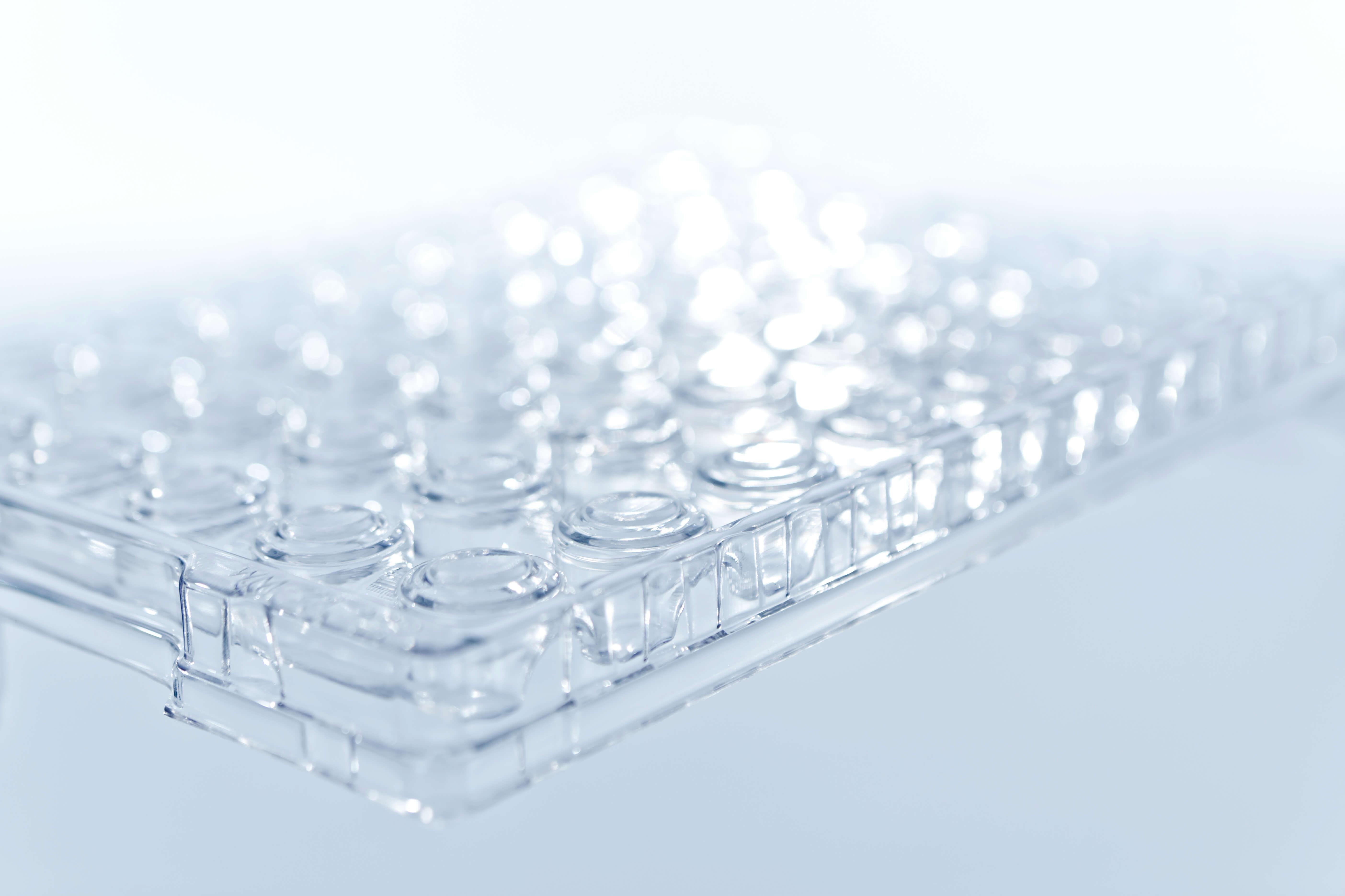 transparente Werkstückträger Einweglösung